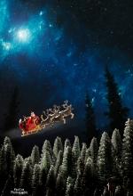 Santa Tree Tops