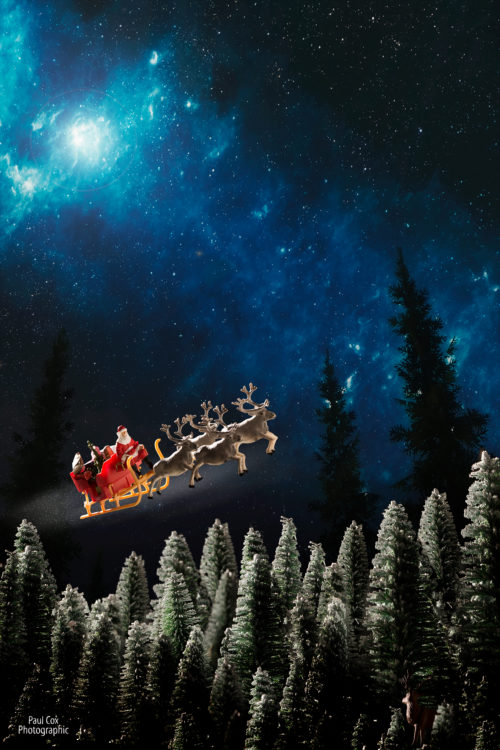 Christmas Diorama Santa Trees