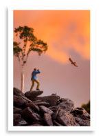 Bird Photographer diorama print