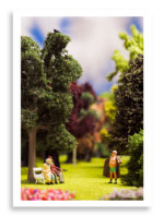Park Flasher diorama print