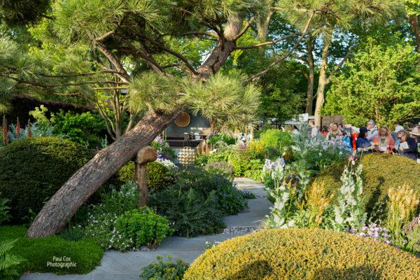 The Morgan Stanley Garden. Chris Beadshaw's show garden, Chelsea Flower Show 2019