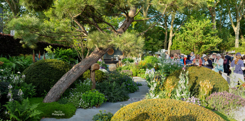 The Morgan Stanley Garden. Chris Beadshaw's show garden, Chelsea Flower Show 2019